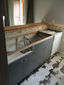 Old counters gone, cabinets next!